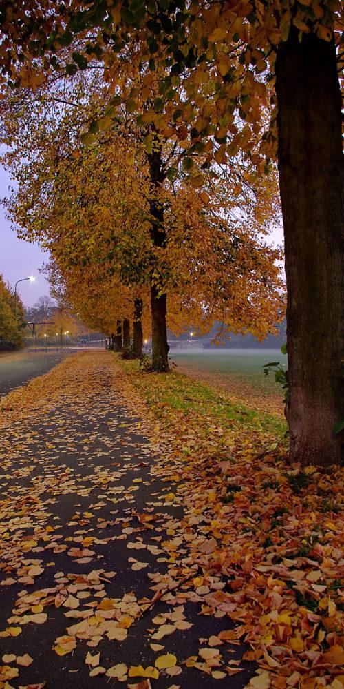Germany - Hanau